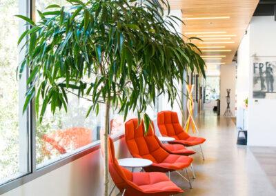 interior-plantscape-06