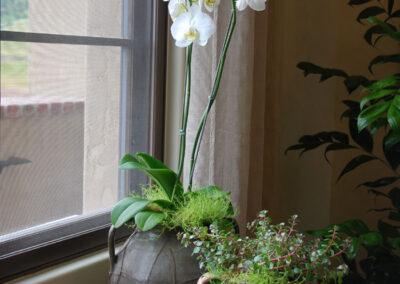interior-plantscape-09