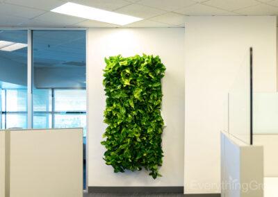 interior-plantscape-12