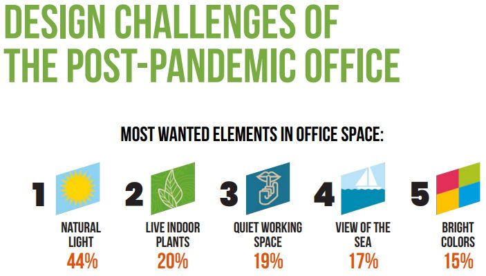 Office Plants for Post Pandemic Workspace Design