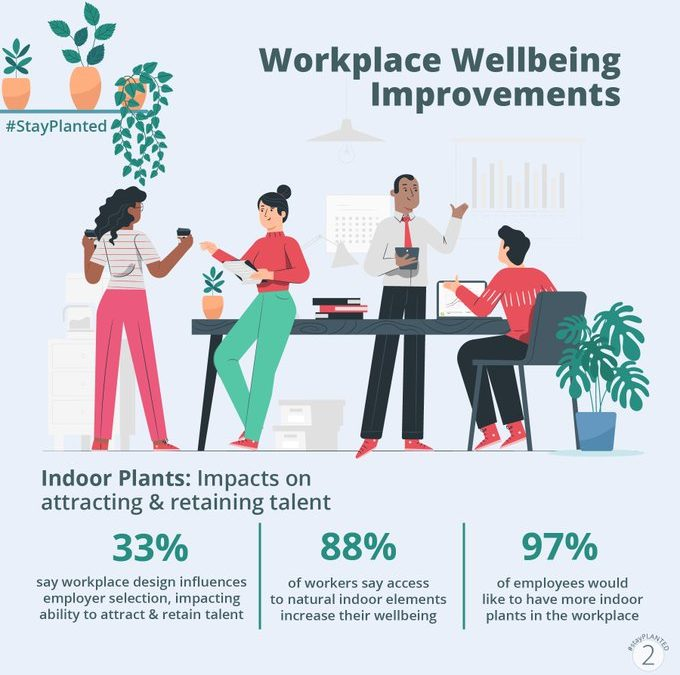 Indoor Plant Impact Attracting and Retaining Talent
