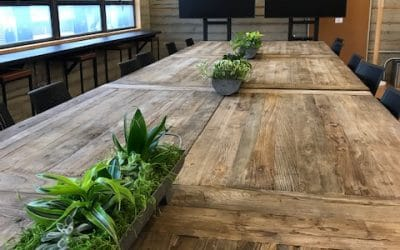 Office Plants Client Moves to New Office in San Francisco